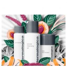 Набор Очищение и Сияние кожи Dermalogica Cleanse and Glow To Go