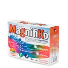 Комплекс для повышения стрессоустойчивости Магнифико  Homeosyn MagnifiKo